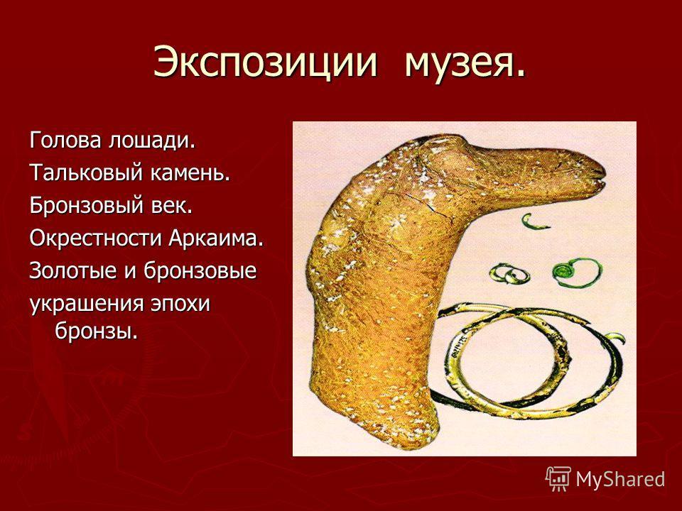 Экспозиции музея. Голова лошади. Тальковый камень. Бронзовый век. Окрестности Аркаима. Золотые и бронзовые украшения эпохи бронзы.