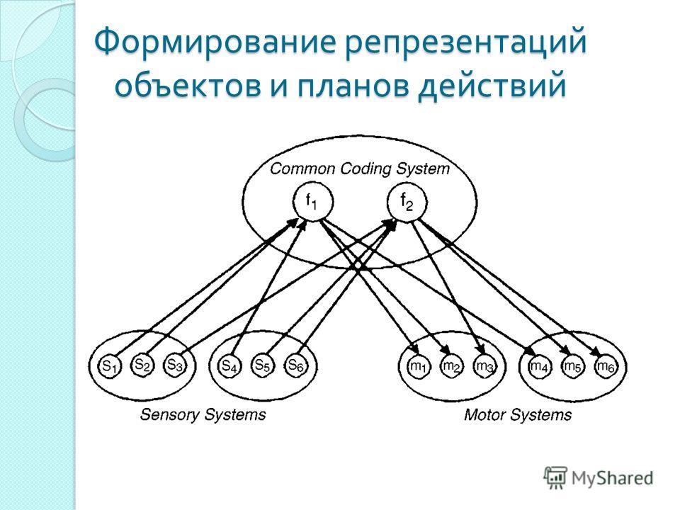 Формирование репрезентаций объектов и планов действий