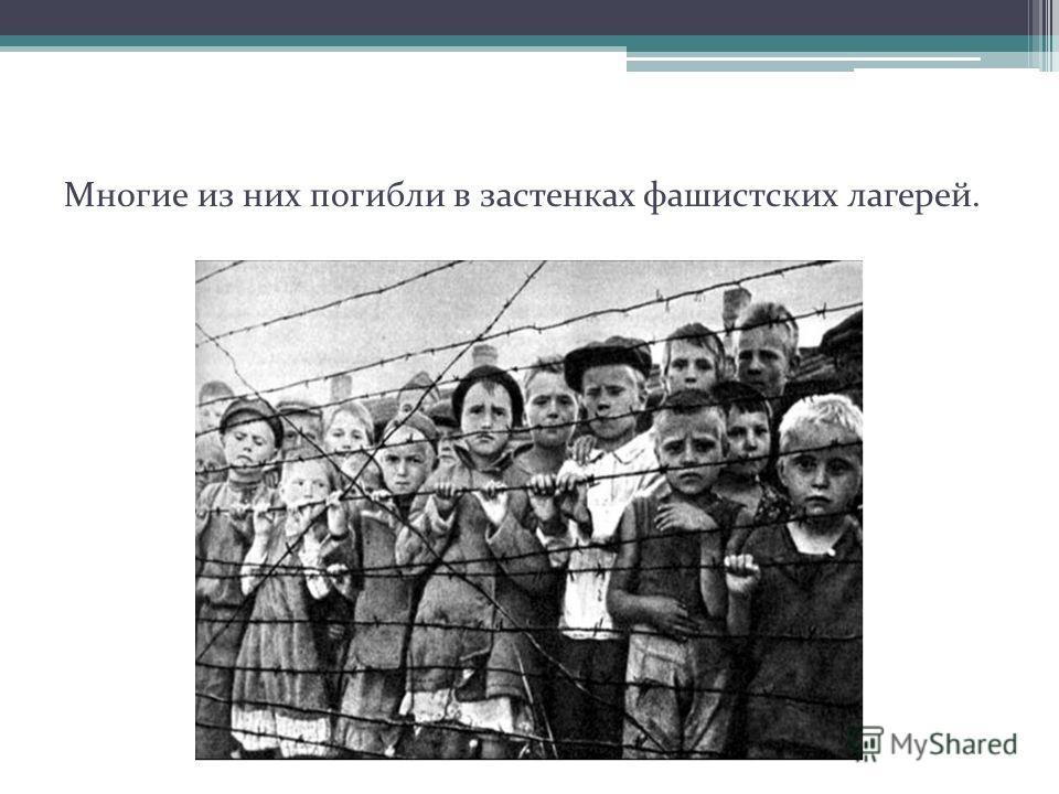 Многие из них погибли в застенках фашистских лагерей.
