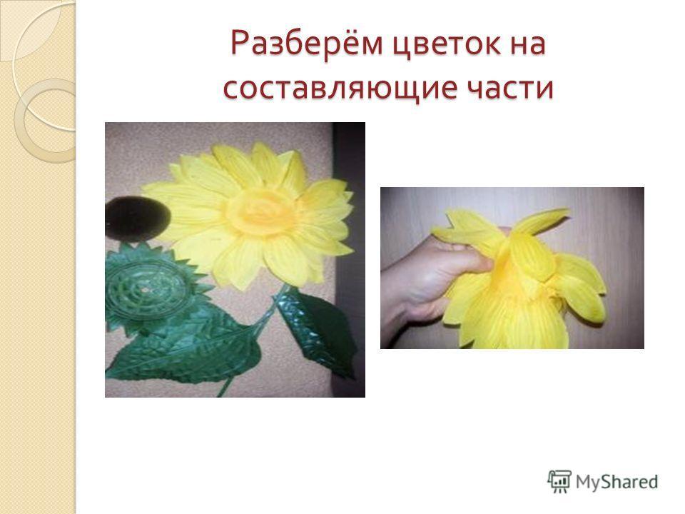 Разберём цветок на составляющие части