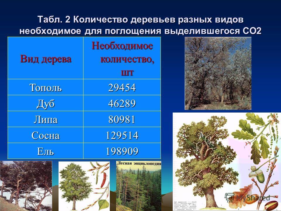 Табл. 2 Количество деревьев разных видов необходимое для поглощения выделившегося СО2 Вид дерева Необходимое количество, шт Тополь29454 Дуб46289 Липа80981 Сосна129514 Ель198909