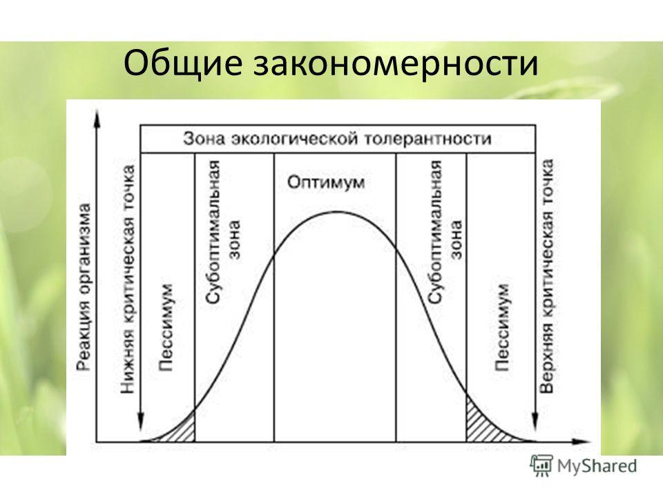 Общие закономерности