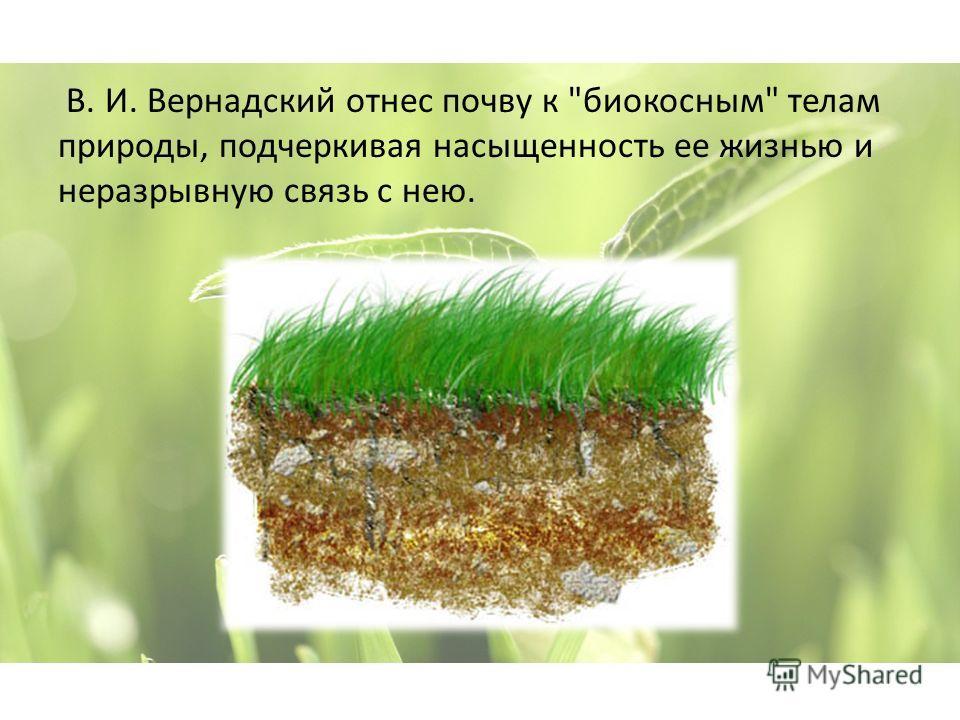 В. И. Вернадский отнес почву к биокосным телам природы, подчеркивая насыщенность ее жизнью и неразрывную связь с нею.