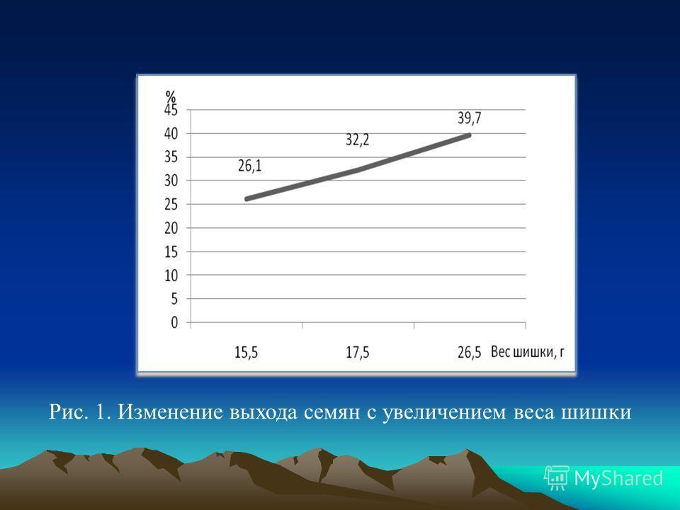 Рис. 1. Изменение выхода семян с увеличением веса шишки