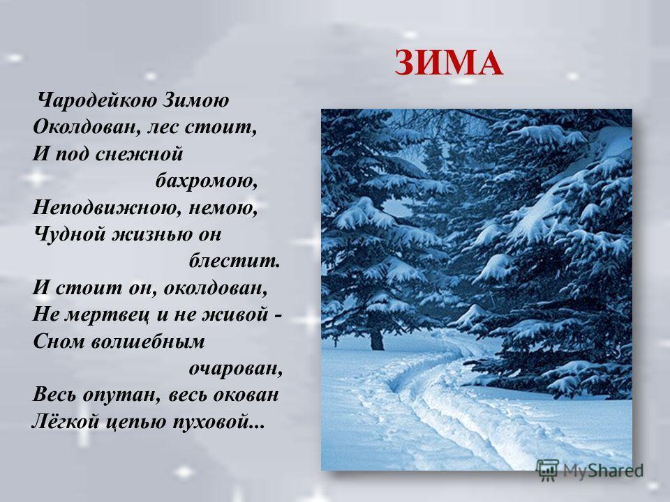 ЗИМА Чародейкою Зимою Околдован, лес стоит, И под снежной бахромою, Неподвижною, немою, Чудной жизнью он блестит. И стоит он, околдован, Не мертвец и не живой - Сном волшебным очарован, Весь опутан, весь окован Лёгкой цепью пуховой...