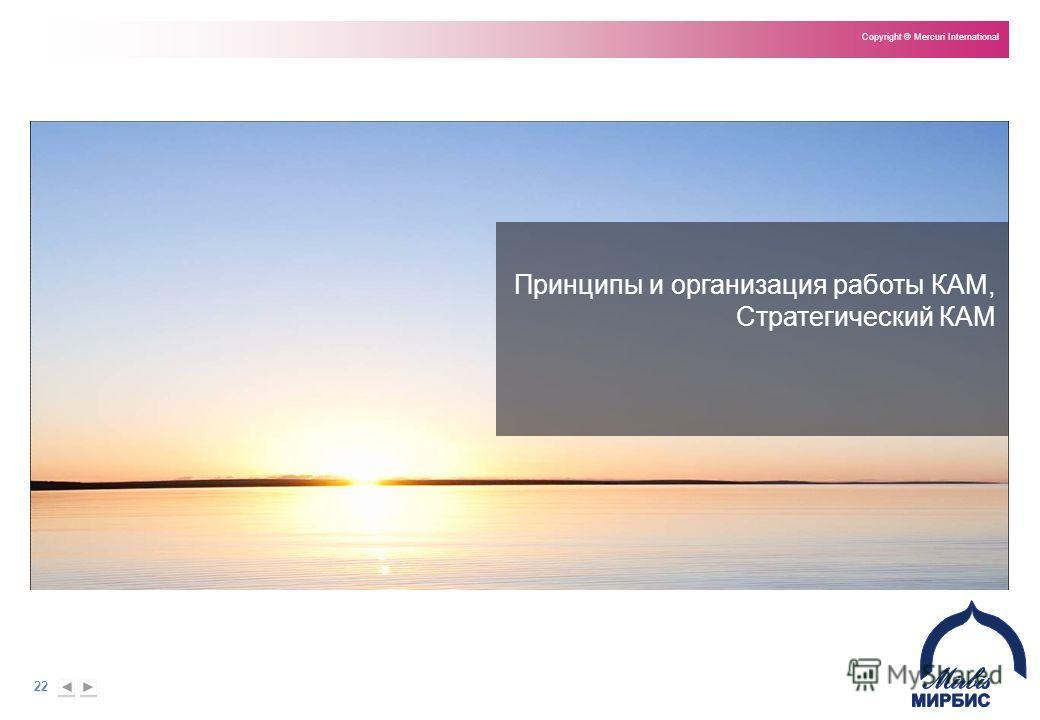 22 Copyright © Mercuri International Принципы и организация работы КАМ, Стратегический КАМ