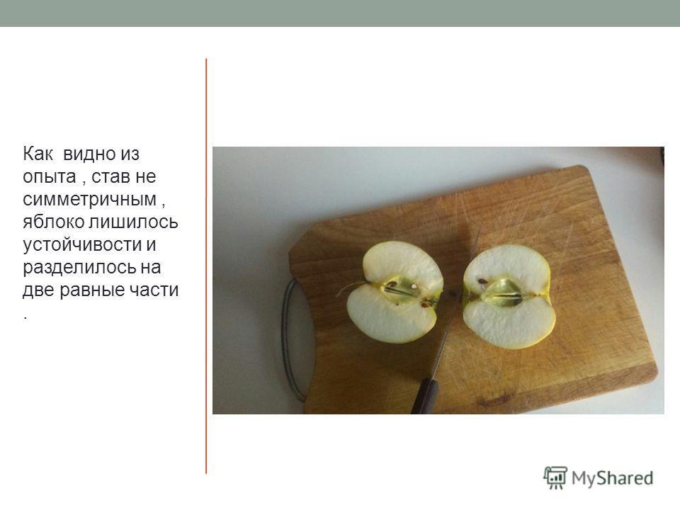 Как видно из опыта, став не симметричным, яблоко лишилось устойчивости и разделилось на две равные части.