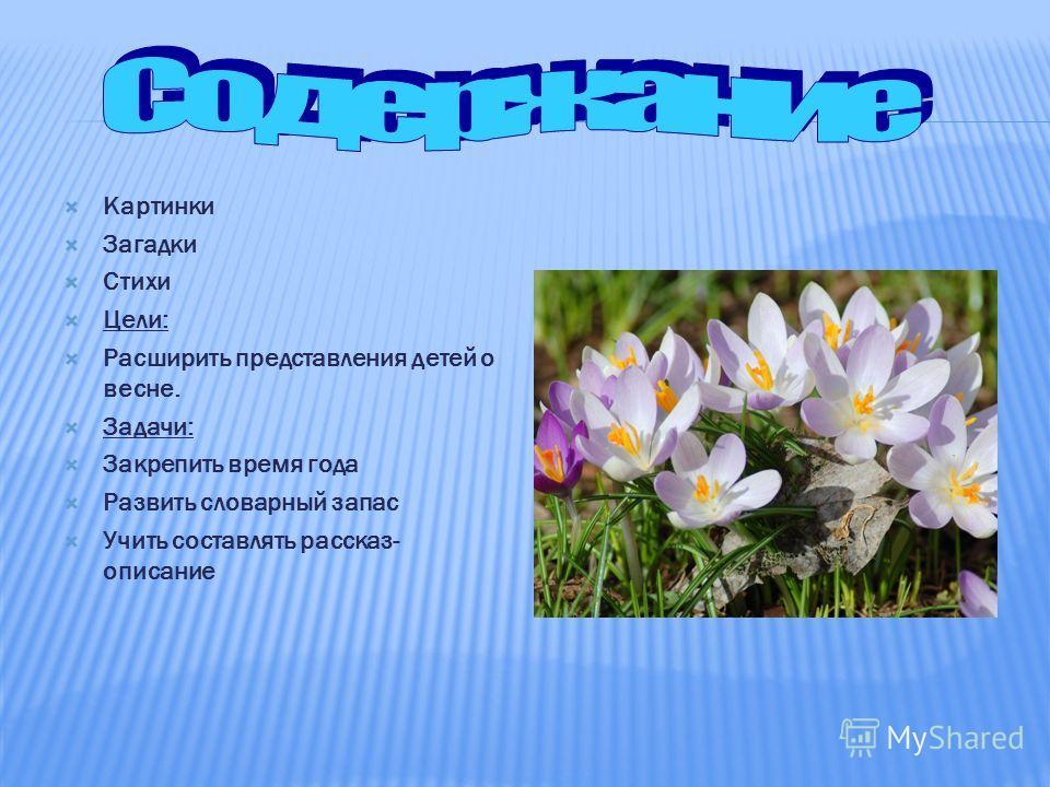 ГБДОУ 58 Приморского района Санкт-Петербург Воспитатель: Прудникова Галина Семёновна