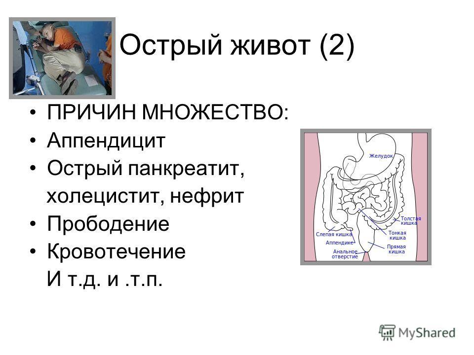 Острый живот (2) ПРИЧИН МНОЖЕСТВО: Аппендицит Острый панкреатит, холецистит, нефрит Прободение Кровотечение И т.д. и.т.п.
