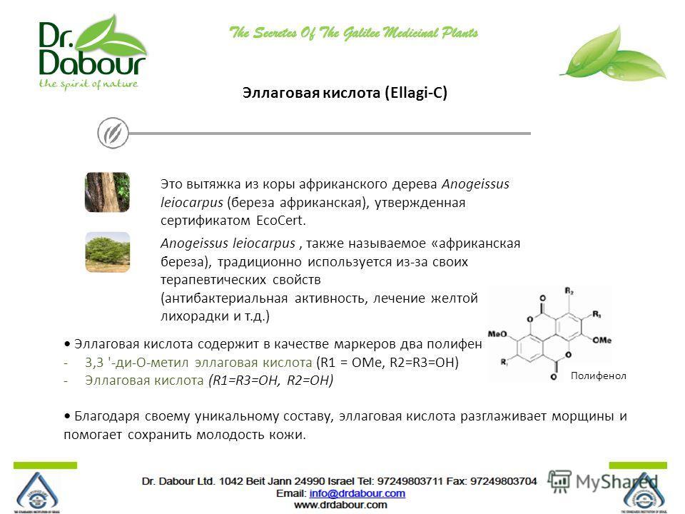 Эллаговая кислота (Ellagi-C) Это вытяжка из коры африканского дерева Anogeissus leiocarpus (береза африканская), утвержденная сертификатом EcoCert. Anogeissus leiocarpus, также называемое «африканская береза), традиционно используется из-за своих тер