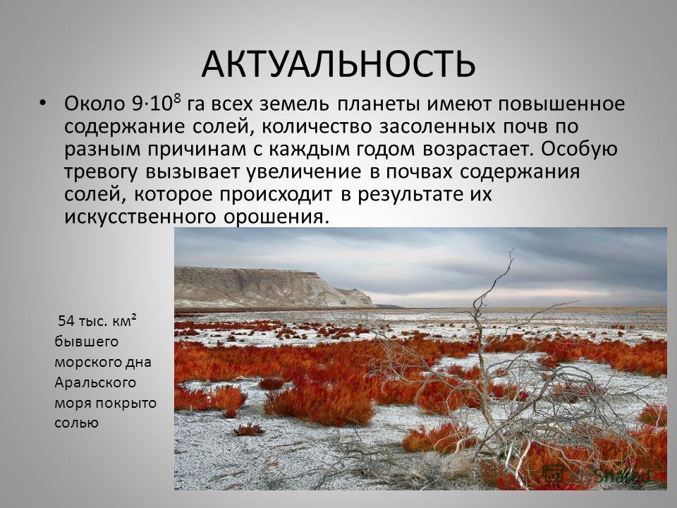 АКТУАЛЬНОСТЬ Около 9·10 8 га всех земель планеты имеют повышенное содержание солей, количество засоленных почв по разным причинам с каждым годом возрастает. Особую тревогу вызывает увеличение в почвах содержания солей, которое происходит в результате