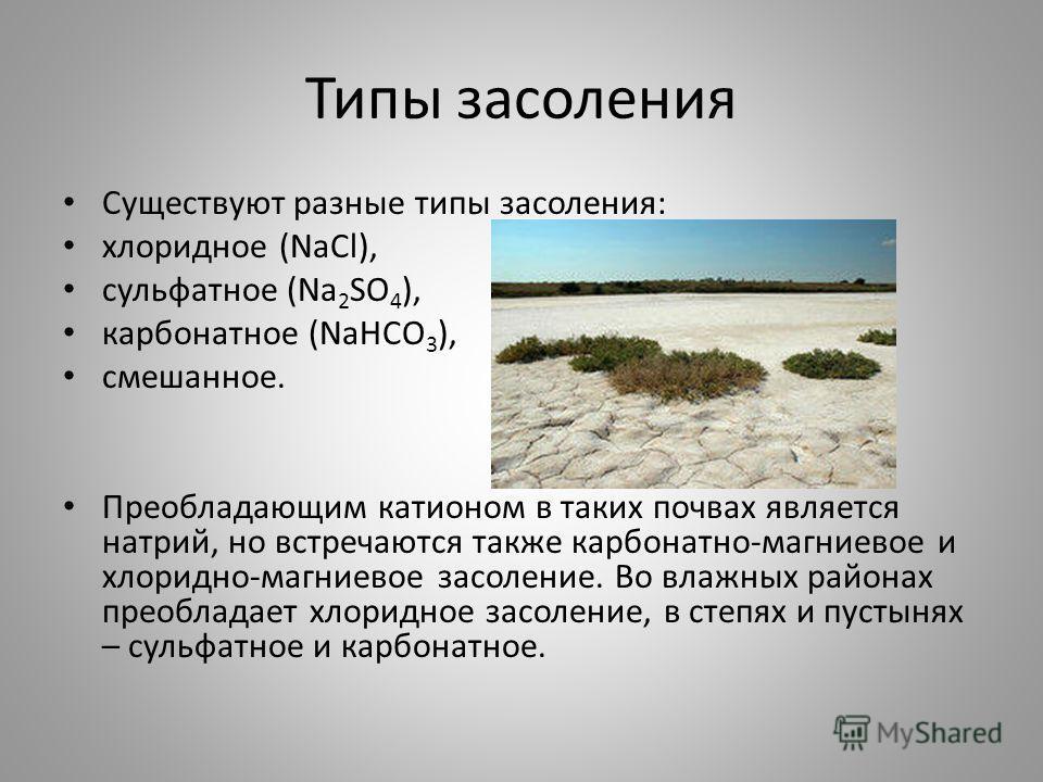 Типы засоления Существуют разные типы засоления: хлоридное (NaCl), сульфатное (Na 2 SO 4 ), карбонатное (NaHCO 3 ), смешанное. Преобладающим катионом в таких почвах является натрий, но встречаются также карбонатно-магниевое и хлоридно-магниевое засол