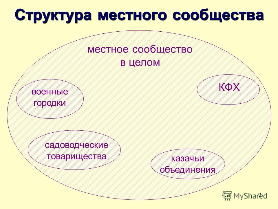 9 Структура местного сообщества казачьи объединения КФХ садоводческие товарищества военные городки местное сообщество в целом