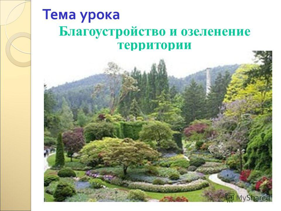 Тема урока Благоустройство и озеленение территории
