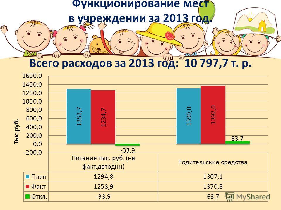 Функционирование мест в учреждении за 2013 год. Всего расходов за 2013 год: 10 797,7 т. р.