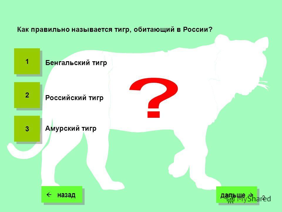 2 назад дальше дальше Как правильно называется тигр, обитающий в России? Российский тигр Амурский тигр Бенгальский тигр 1 1 2 2 3 3