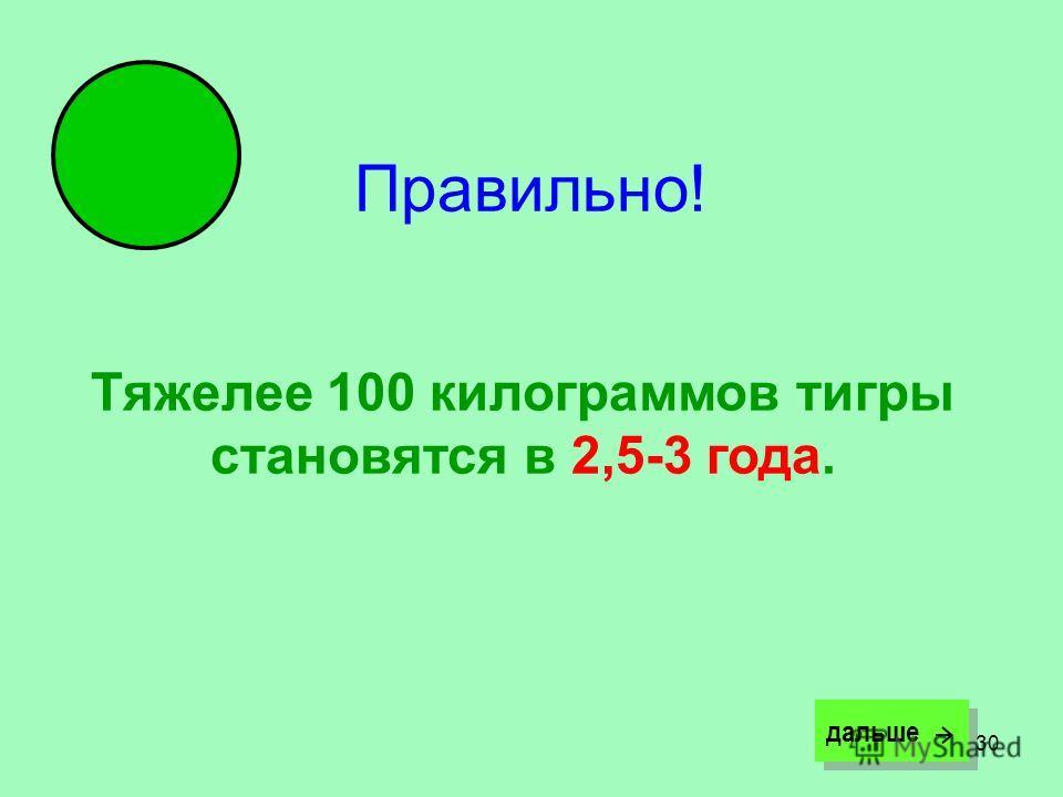 30 Правильно! Тяжелее 100 килограммов тигры становятся в 2,5-3 года. дальше