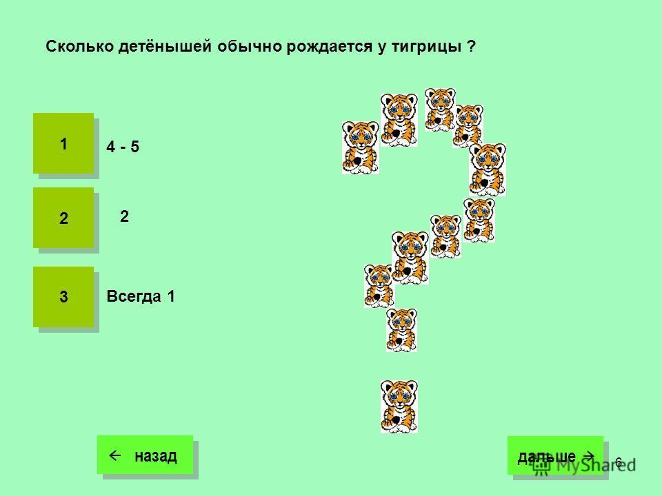 6 назад дальше дальше Сколько детёнышей обычно рождается у тигрицы ? 2 4 - 5 1 1 2 2 3 3 Всегда 1