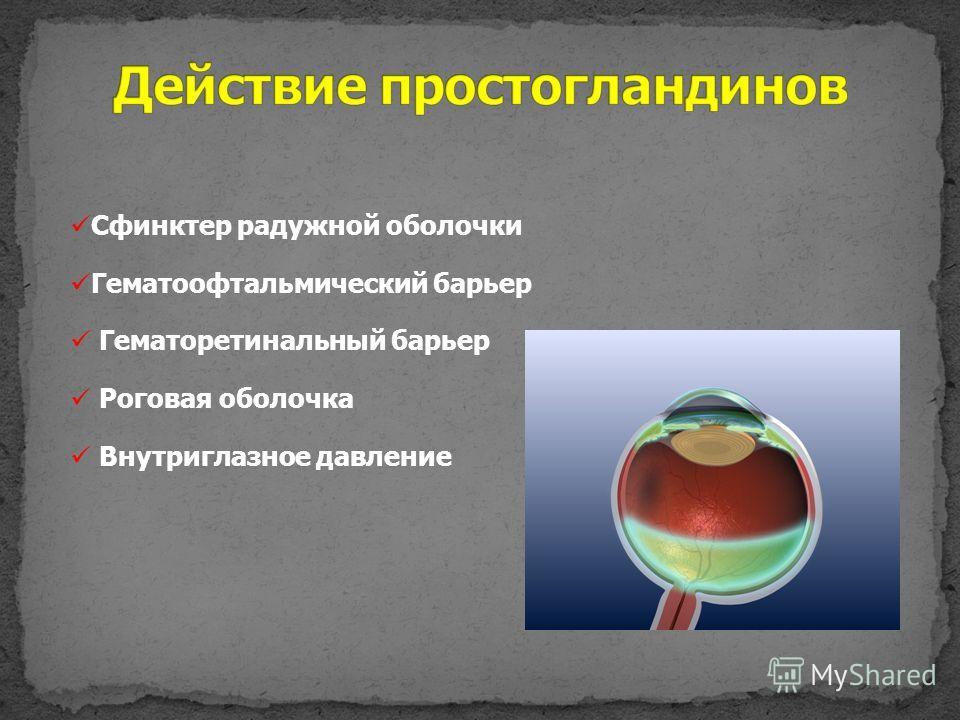 Сфинктер радужной оболочки Гематоофтальмический барьер Гематоретинальный барьер Роговая оболочка Внутриглазное давление