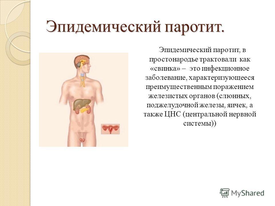 Эпидемический паротит. Эпидемический паротит, в простонародье трактовали как «свинка» – это инфекционное заболевание, характеризующееся преимущественным поражением железистых органов (слюнных, поджелудочной железы, яичек, а также ЦНС (центральной нер