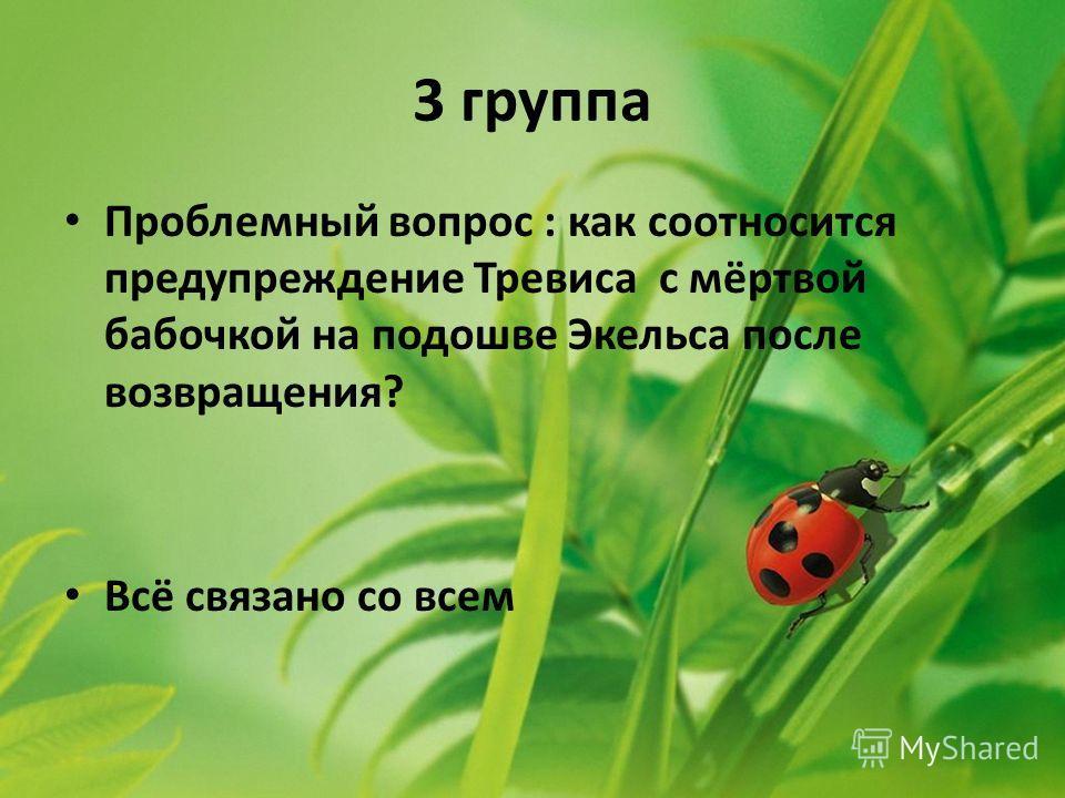 3 группа Проблемный вопрос : как соотносится предупреждение Тревиса с мёртвой бабочкой на подошве Экельса после возвращения? Всё связано со всем