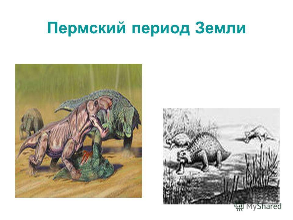 Пермский период Земли