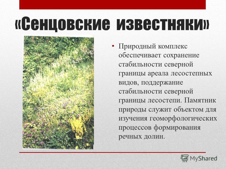 «Сенцовские известняки» Природный комплекс обеспечивает сохранение стабильности северной границы ареала лесостепных видов, поддержание стабильности северной границы лесостепи. Памятник природы служит объектом для изучения геоморфологических процессов