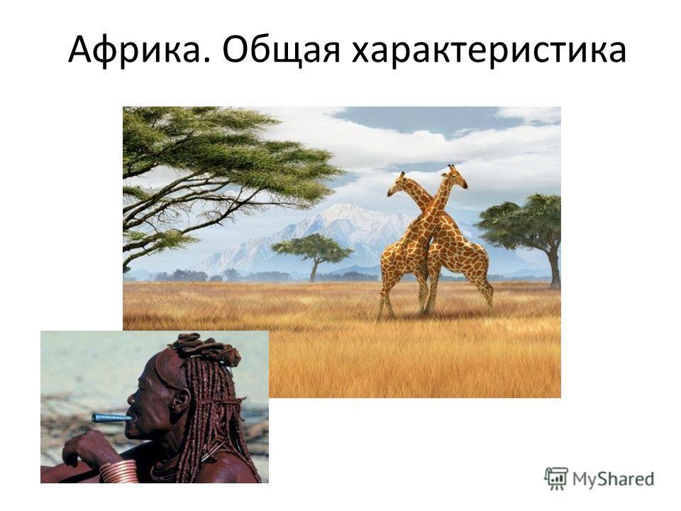 Африка. Общая характеристика