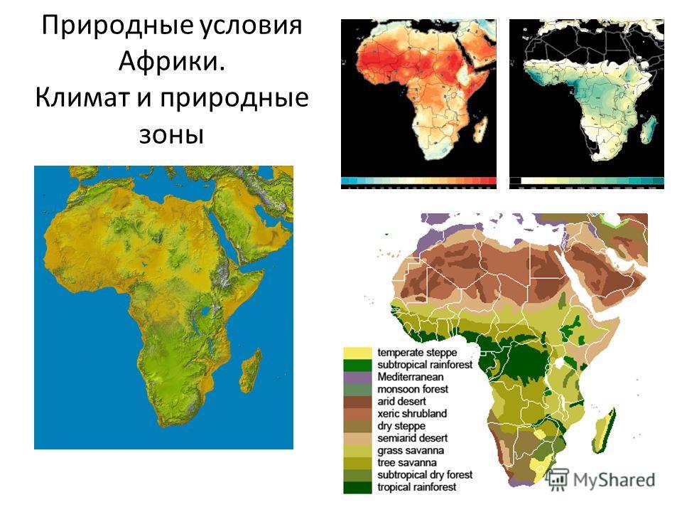 Природные условия Африки. Климат и природные зоны