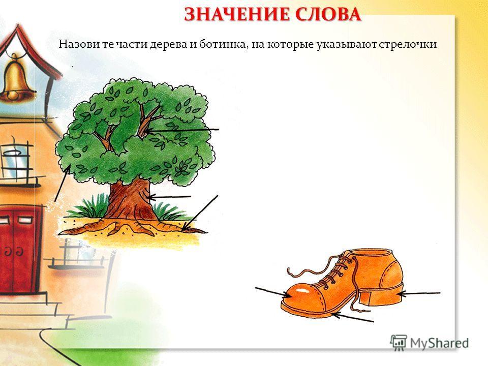 Назови те части дерева и ботинка, на которые указывают стрелочки ЗНАЧЕНИЕ СЛОВА