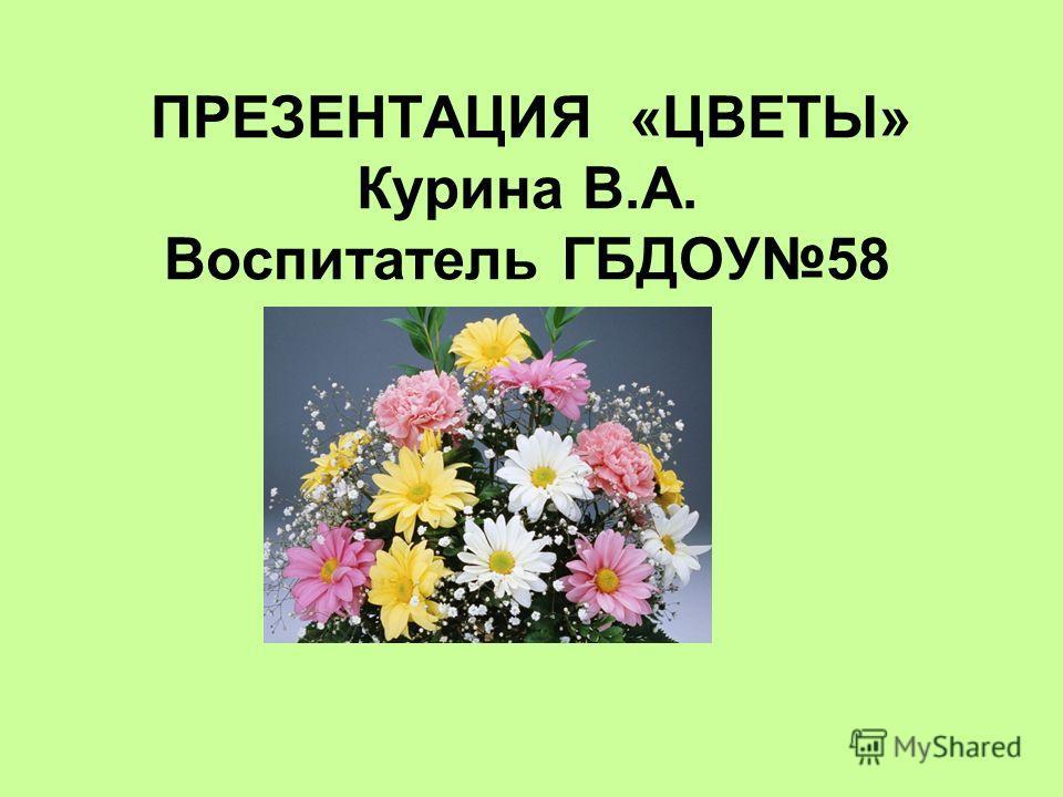 ПРЕЗЕНТАЦИЯ «ЦВЕТЫ» Курина В.А. Воспитатель ГБДОУ58