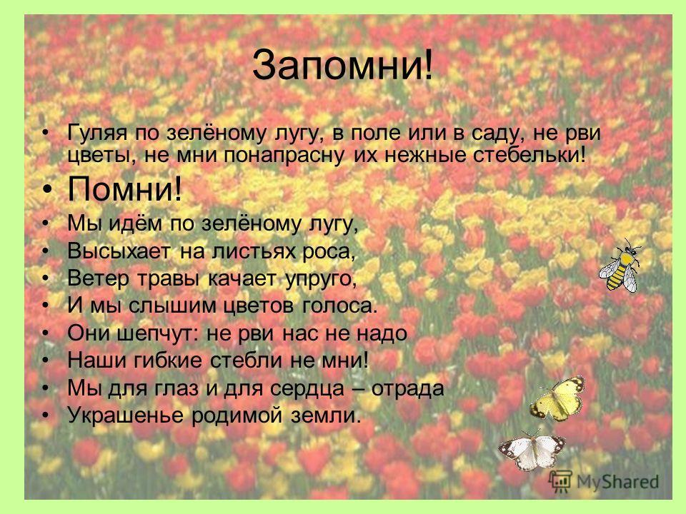 Запомни! Гуляя по зелёному лугу, в поле или в саду, не рви цветы, не мни понапрасну их нежные стебельки! Помни! Мы идём по зелёному лугу, Высыхает на листьях роса, Ветер травы качает упруго, И мы слышим цветов голоса. Они шепчут: не рви нас не надо Н