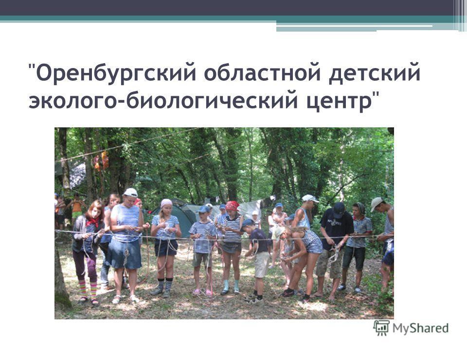 Оренбургский областной детский эколого-биологический центр