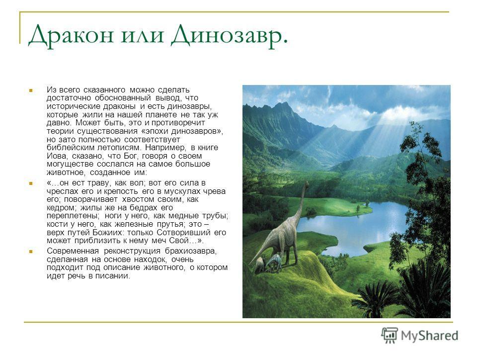 Дракон или Динозавр. Из всего сказанного можно сделать достаточно обоснованный вывод, что исторические драконы и есть динозавры, которые жили на нашей планете не так уж давно. Может быть, это и противоречит теории существования «эпохи динозавров», но