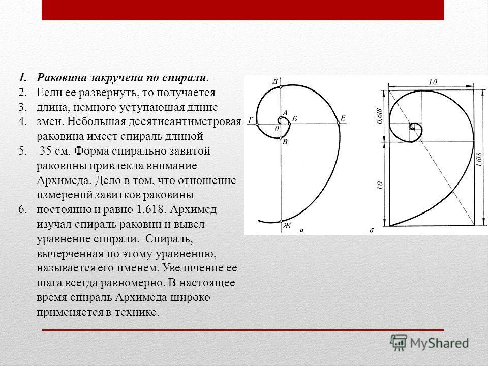 1.Pаковина закручена по спирали. 2.Если ее развернуть, то получается 3.длина, немного уступающая длине 4.змеи. Небольшая десятисантиметровая раковина имеет спираль длиной 5. 35 см. Форма спирально завитой раковины привлекла внимание Архимеда. Дело в