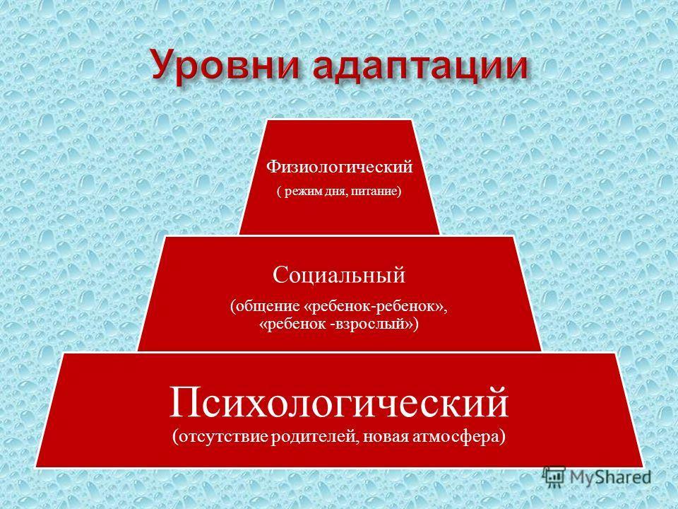 Физиологический ( режим дня, питание) Социальный (общение «ребенок-ребенок», «ребенок -взрослый») Психологический (отсутствие родителей, новая атмосфера)