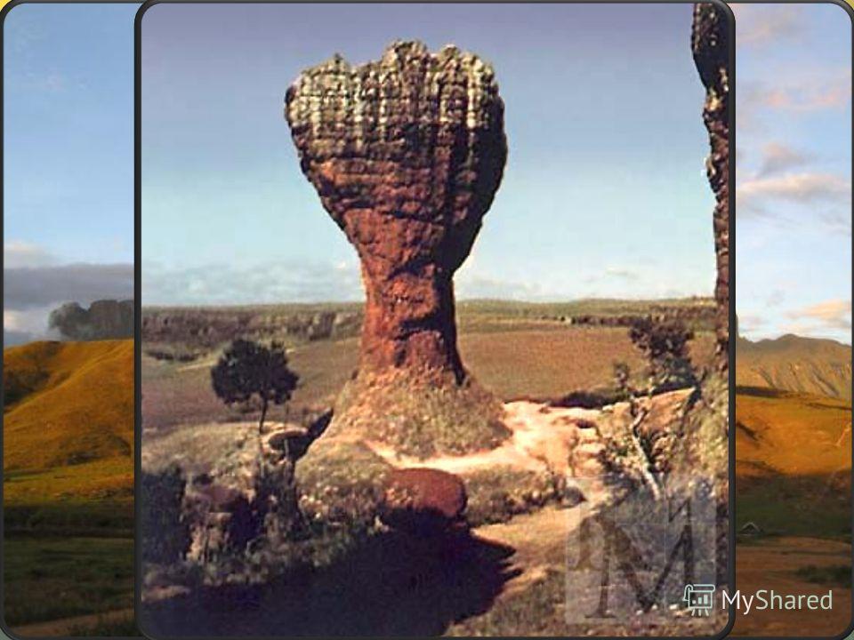 Гвианское плоскогорье - выступ докембрийского фундамента в северной части Южно- Американской платформы