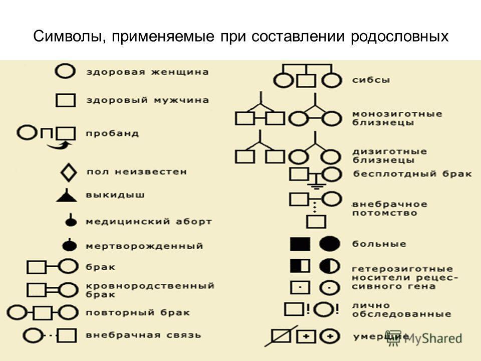 Символы, применяемые при составлении родословных