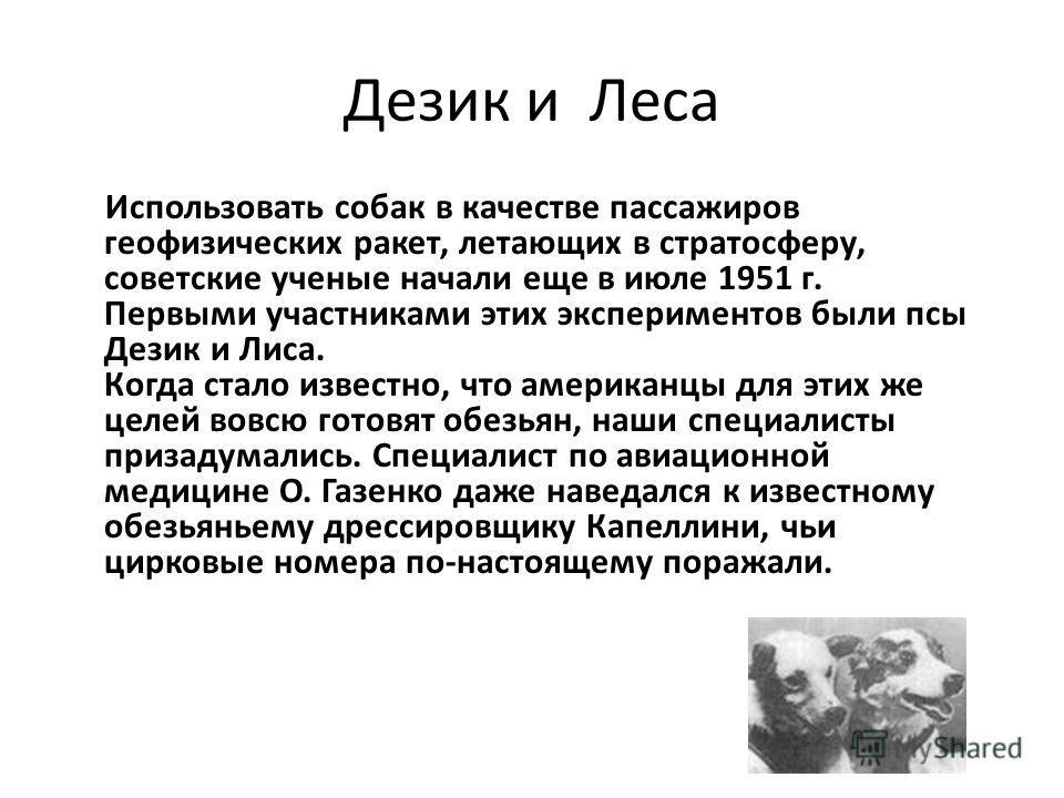 Дезик и Леса Использовать собак в качестве пассажиров геофизических ракет, летающих в стратосферу, советские ученые начали еще в июле 1951 г. Первыми участниками этих экспериментов были псы Дезик и Лиса. Когда стало известно, что американцы для этих