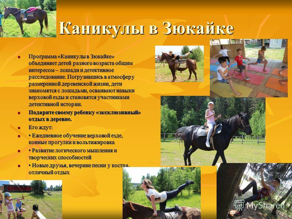 Каникулы в Зюкайке Программа «Каникулы в Зюкайке» объединяет детей разного возраста общим интересом – лошади и детективное расследование. Погрузившись в атмосферу размеренной деревенской жизни, дети знакомятся с лошадьми, осваивают навыки верховой ез