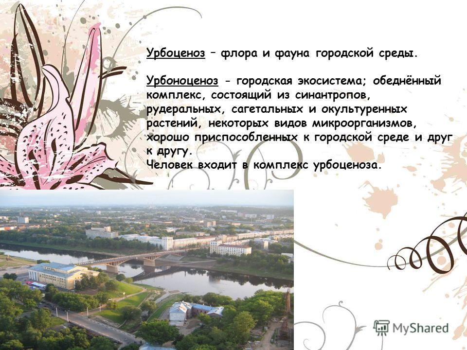 Урбоценоз – флора и фауна городской среды. Урбоноценоз - городская экосистема; обеднённый комплекс, состоящий из синантропов, рудеральных, сагетальных и окультуренных растений, некоторых видов микроорганизмов, хорошо приспособленных к городской среде