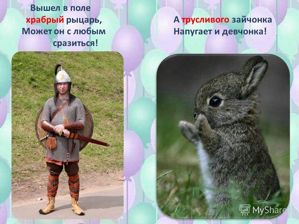 Вышел в поле храбрый рыцарь, Может он с любым сразиться! А трусливого зайчонка Напугает и девчонка!