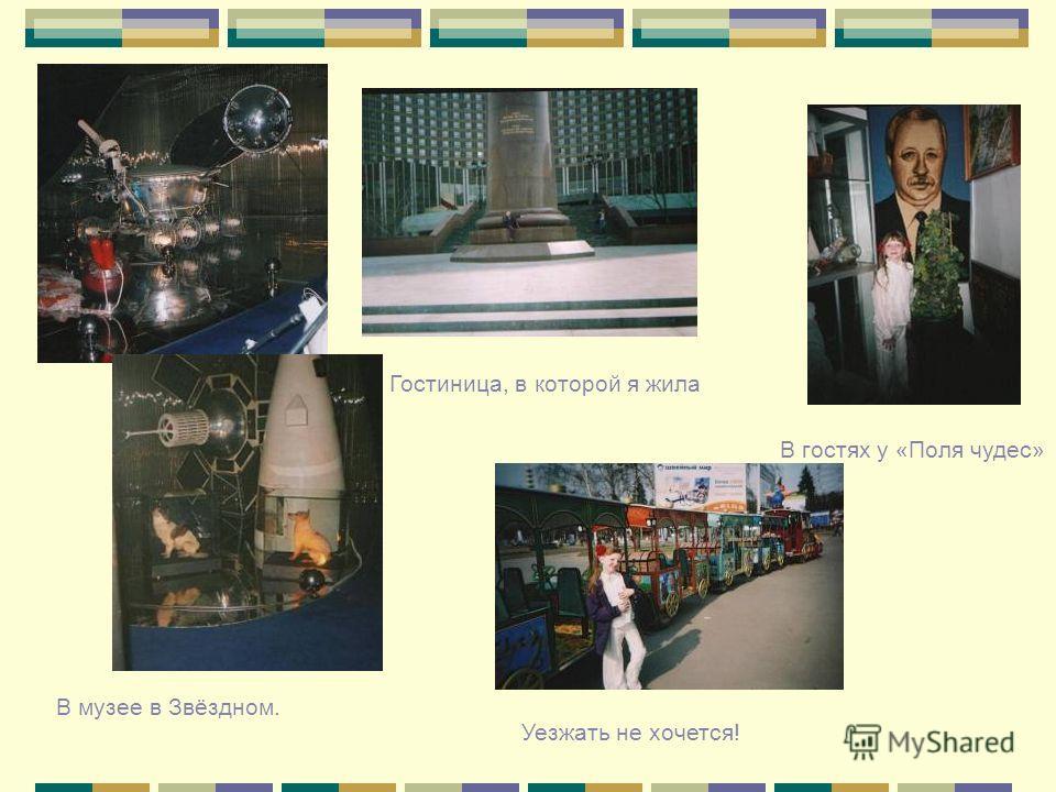 Гостиница, в которой я жила В музее в Звёздном. В гостях у «Поля чудес» Уезжать не хочется!
