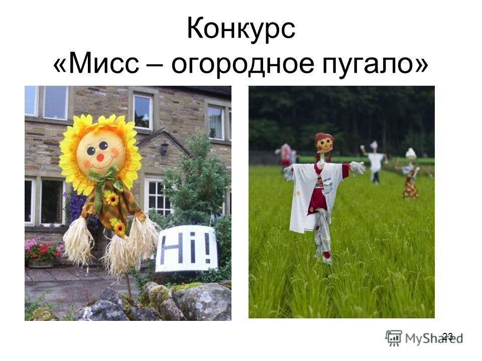 Конкурс «Мисс – огородное пугало» 22