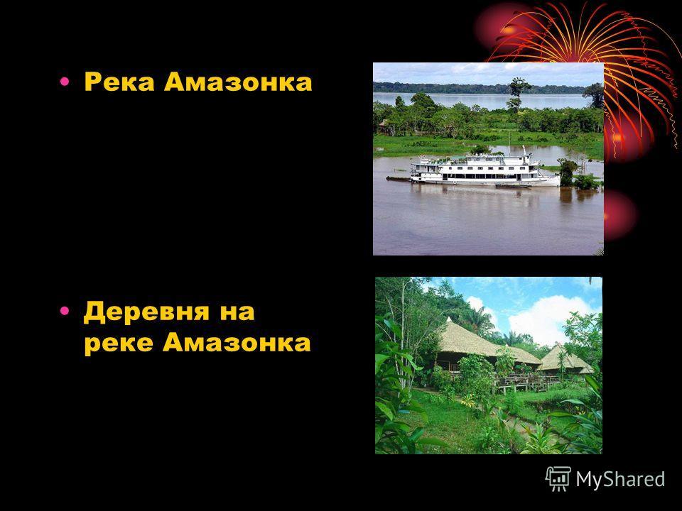 Река Амазонка Деревня на реке Амазонка