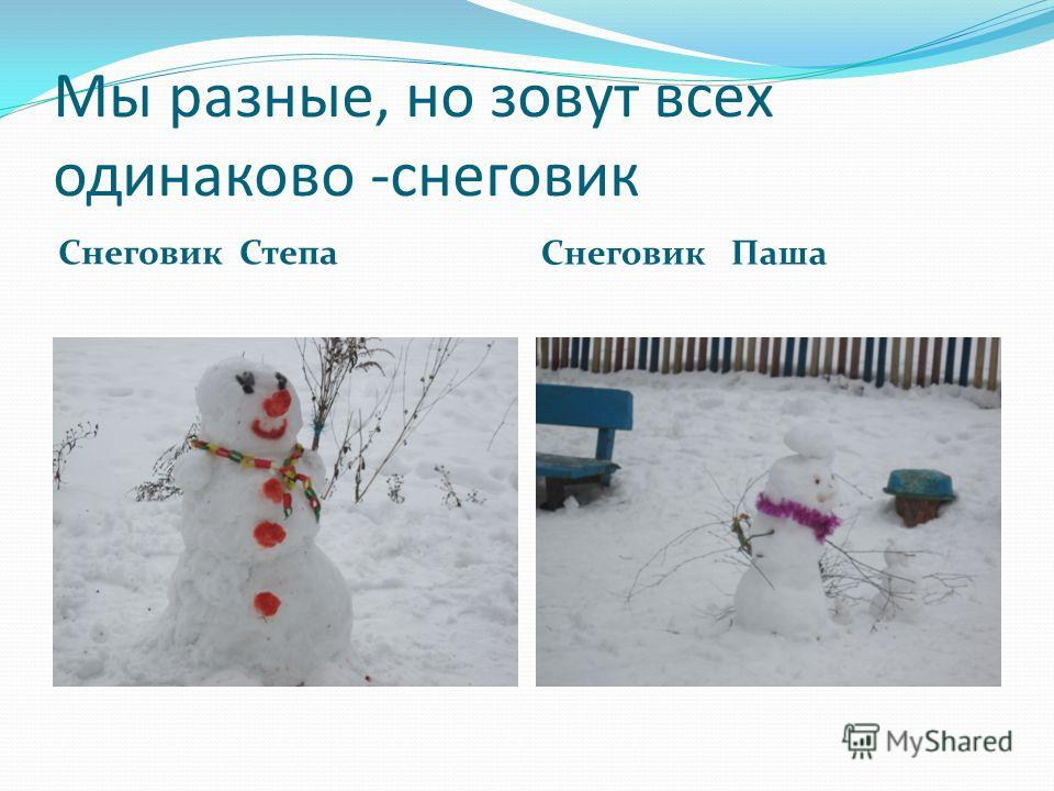Мы разные, но зовут всех одинаково -снеговик Снеговик Степа Снеговик Паша