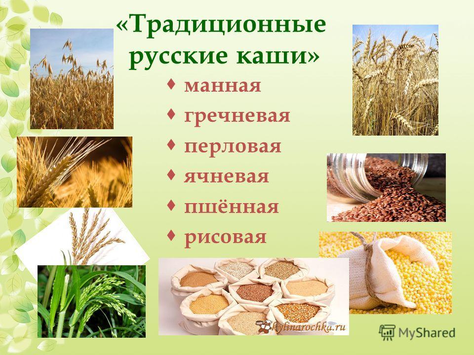 «Традиционные русские каши» манная гречневая перловая ячневая пшённая рисовая