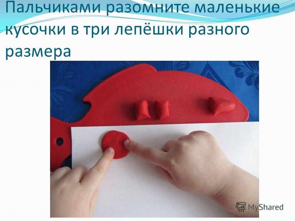 Пальчиками разомните маленькие кусочки в три лепёшки разного размера