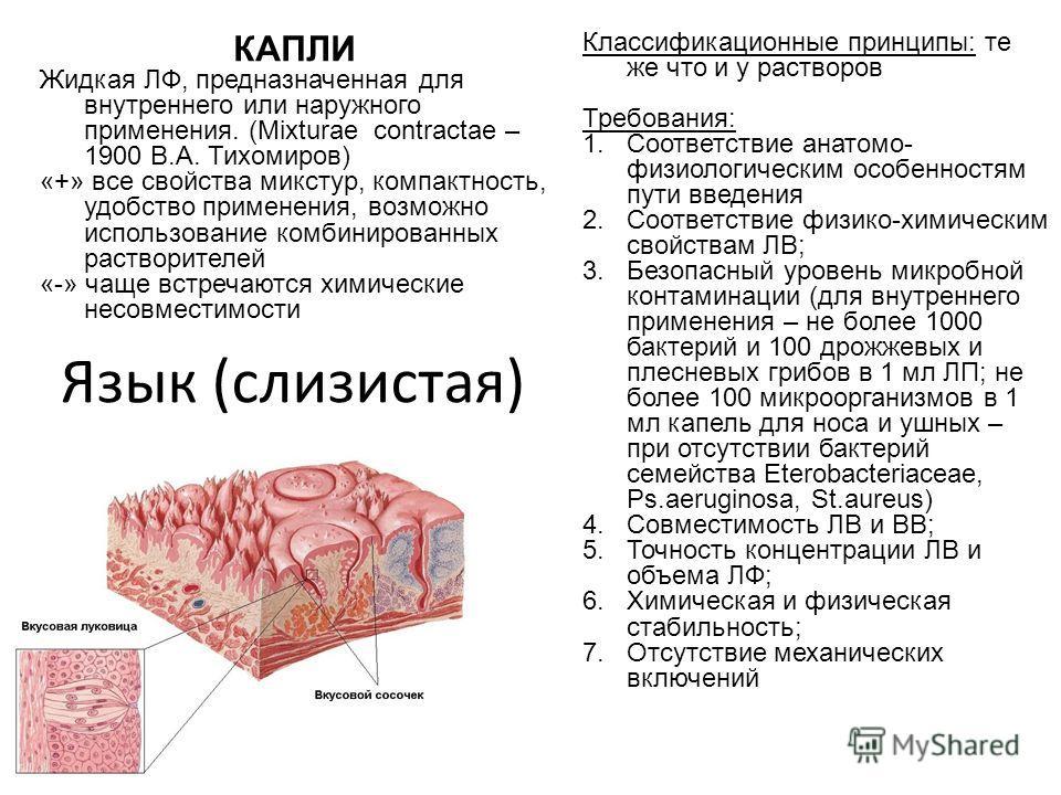 Язык (слизистая) Классификационные принципы: те же что и у растворов Требования: 1.Соответствие анатомо- физиологическим особенностям пути введения 2.Соответствие физико-химическим свойствам ЛВ; 3.Безопасный уровень микробной контаминации (для внутре