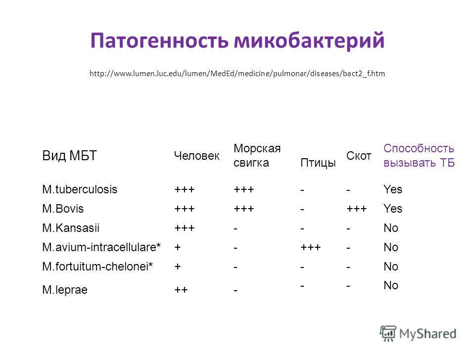 Патогенность микобактерий http://www.lumen.luc.edu/lumen/MedEd/medicine/pulmonar/diseases/bact2_f.htm Вид МБТ Человек Морская свигка Птицы Скот Способность вызывать TБ M.tuberculosis+++ --Yes M.Bovis+++ - Yes M.Kansasii+++---No M.avium-intracellulare